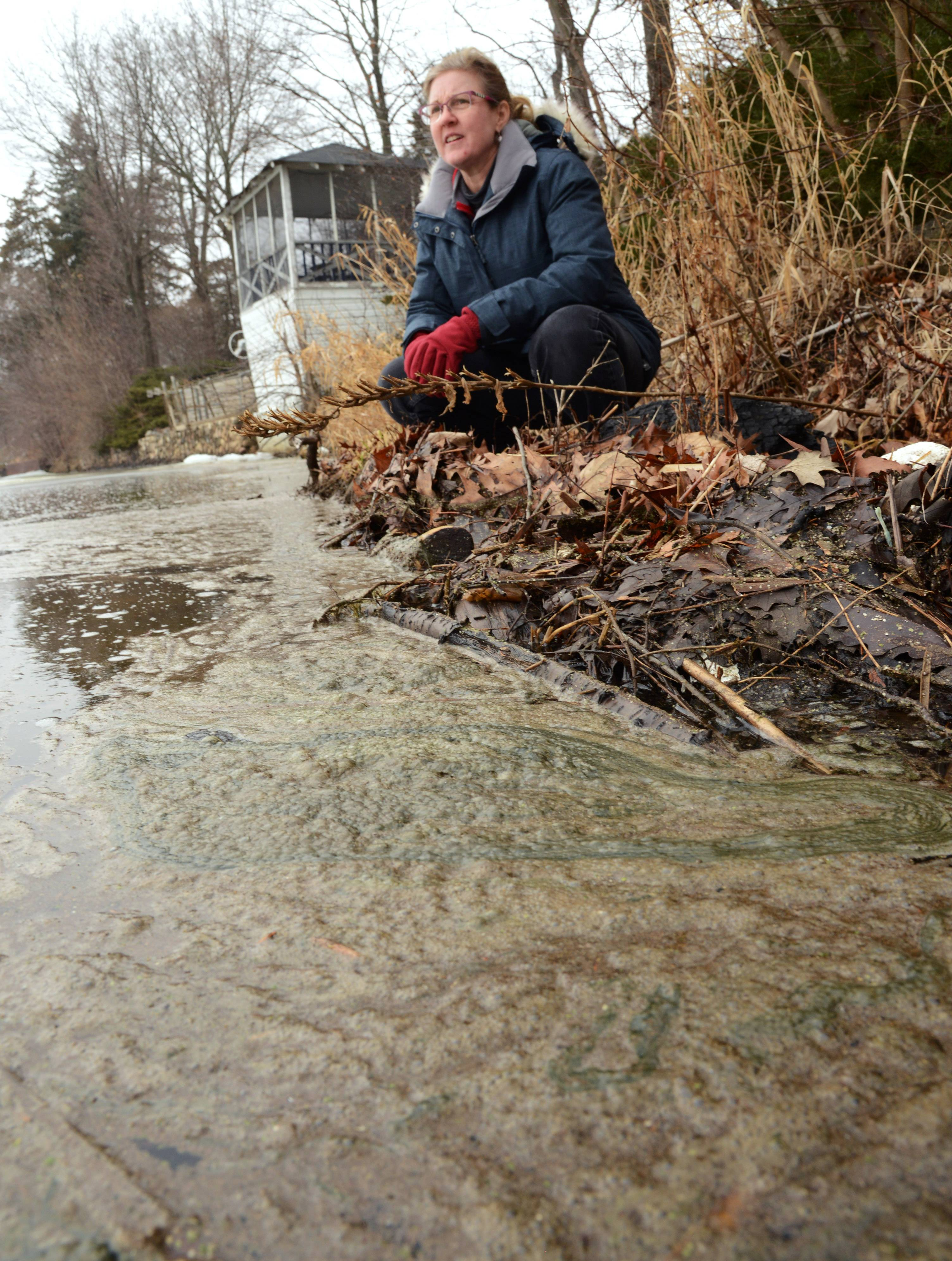 Round Lake residents wait for Baxter Healthcare action to clean up Long Lake