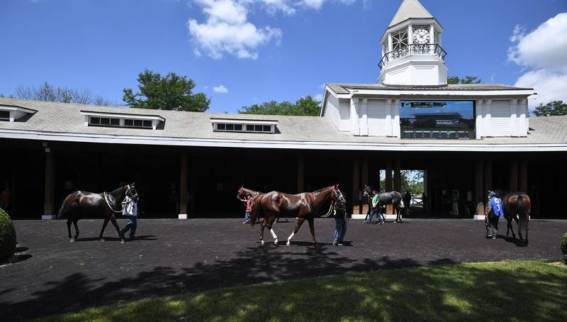 Opening day at Arlington Racecourse has the first race horses in the Paddock area getting ready for the 5 furlongs turf race with the the number two horse Lipliner winning the race.